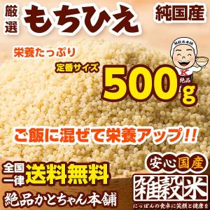 米 雑穀 雑穀米 国産 もちひえ 500g 送料無料 厳選 稗 ひえ 雑穀米本舗