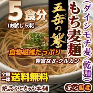 ダイエットフード 麺類 国産 特選 ダイシモチ麦麺 5束入り1袋[乾麺] 5食分 送料無料 もち麦麺 国産原料使用 雑穀米本舗 katochanhonpo