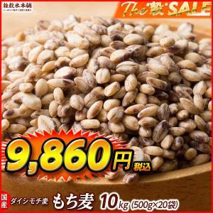 TVで話題 絶品 もち麦 10kg (500g x 20袋) 業務用サイズ 高品質 厳選国産 ダイシモチ麦 大麦 水溶性食物繊維 β-グルカン 善玉菌 ラクやせ|katochanhonpo