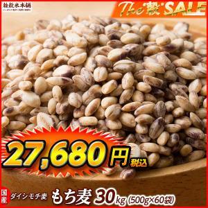 絶品 もち麦 30kg(500g×60袋)ダイシモチ 停滞腸解消 完全数量限定 厳選国産 業務用サイズ 送料無料|katochanhonpo