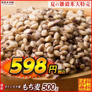 TVで話題 絶品 もち麦 500g 定番サイズ 高品質 厳選国産 ダイシモチ麦 大麦 水溶性食物繊維 β-グルカン ラクやせ ダイエット 送料無料|katochanhonpo