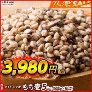 TVで話題 絶品 もち麦 5kg (500g x 10袋) 業務用サイズ 高品質 厳選国産 ダイシモチ麦 大麦 水溶性食物繊維 β-グルカン 善玉菌 ラクやせ|katochanhonpo