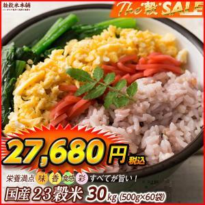雑穀 栄養満点23穀米 30kg (500g×60袋) 国産 業務用 送料無料|katochanhonpo