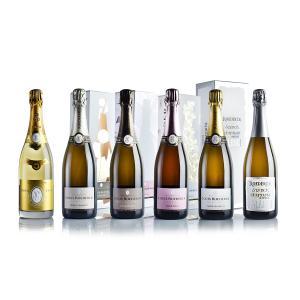 ルイ・ロデレール スペシャル6本セット (正規品) (フランス シャンパン シャンパーニュ 泡)