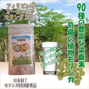モリンガ100% 緑汁タブレット|katsuryokusai