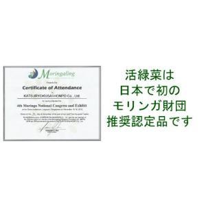 モリンガ100% 緑汁まるんがい お試しタブレット|katsuryokusai|02