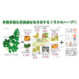 モリンガ100% 緑汁まるんがい お試しタブレット|katsuryokusai|04