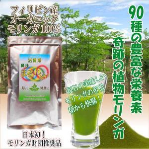 モリンガ100% 緑汁まるんがい徳用100g|katsuryokusai