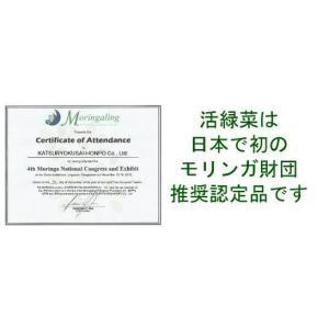 モリンガ100% 緑汁まるんがい徳用2個セット|katsuryokusai|02