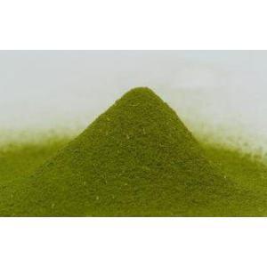 モリンガ100% 緑汁まるんがい徳用100g katsuryokusai 03