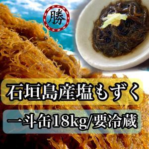 もずく 沖縄県石垣島産 塩もずく 18kg 入り 一斗缶 業務用 お得な大容量 送料無料|katsusuisanmozuku