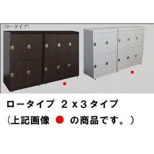 【価格ご相談致します。】ロータイプ 鍵付き下駄箱/鍵付きロッカー3x2段 完成品 カギ付き/かぎ付き|katsuyanetcompany