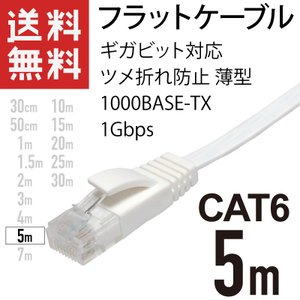 LANケーブル フラット 5m ギガ対応 CAT6 ツメ折れ防止 薄型 フラットケーブル ストレート...