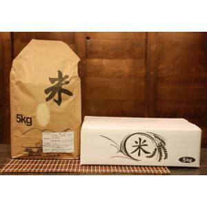 【ギフト】かわば米 5kg|kawaba|02