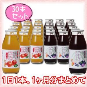 【たっぷり30本】 りんごジュース&ブルーベリージュース 180ml×各15本(30本セット)|kawaba