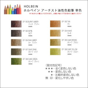 ホルベイン アーチスト色鉛筆 単色 5|kawachigazai