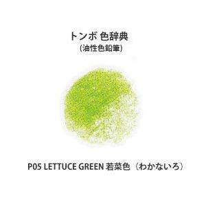 色鉛筆 トンボ 色辞典 単色 P05 LETTUCE GREEN 若菜色 (わかないろ)|kawachigazai