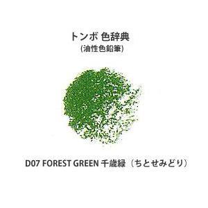 色鉛筆 トンボ 色辞典 単色 D07 FOREST GREEN 千歳緑 (ちとせみどり) kawachigazai