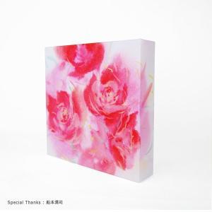 doArt. 3Dペーパーキャンバス 1枚入|kawachigazai|03