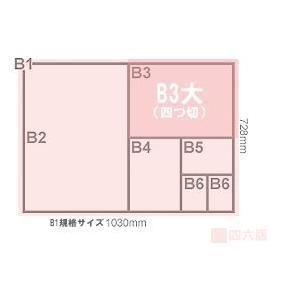 バロンケント紙(135kg) B3大(B3より少し大きいサイズ) 10枚|kawachigazai