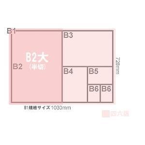 バロンケント紙(135kg) B2大(B2より少し大きいサイズ) 10枚|kawachigazai