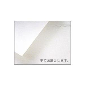 マーメイド紙・白(10枚) 153g  B2大 (515x728mmより少し大きい)|kawachigazai