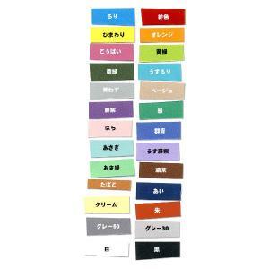 NTラシャ 100kg B4大 26色セット(各1枚計24枚入)|kawachigazai