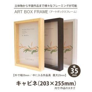 APJ アートボックスフレーム 幅35mm キャビネ・紐なし (105×150mm) 深さ25mm / 立体物|kawachigazai