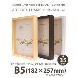APJ アートボックスフレーム 幅35mm B5 (182×257mm) 深さ25mm / 立体物|kawachigazai
