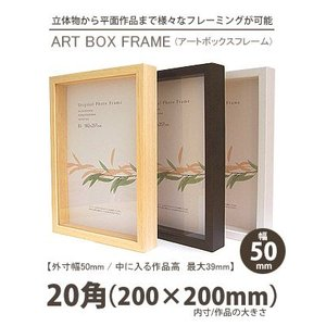 APJ アートボックスフレーム 幅50mm 20角 (正方形200×200mm) 深さ39mm / 立体物|kawachigazai