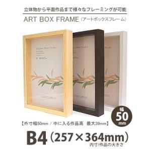 APJ アートボックスフレーム 幅50mm B4 (257×364mm) 深さ39mm / 立体物|kawachigazai