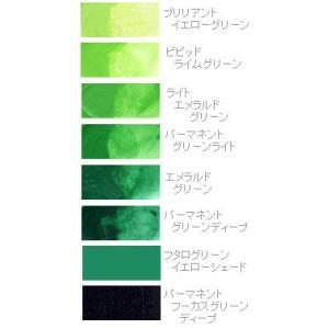 アクリル絵の具 リキテックス レギュラータイプ 6号(20ml) グリーン系1|kawachigazai
