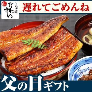 国産 うなぎ 蒲焼き 特大サイズ170g×5本セット 父の日...