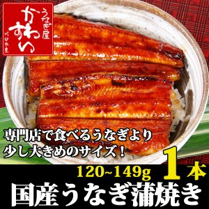 (セール パック)国産うなぎの蒲焼き120g-149g×1本...