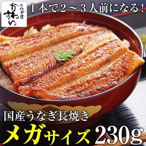 国産うなぎ蒲焼き メガサイズ 230g-249g ×1本(ウ...