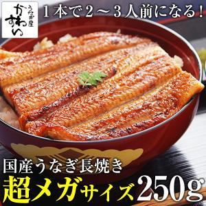 食べ応え満点!超メガサイズの国産うなぎ蒲焼き 250g-26...