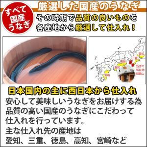 国産 うなぎ 焼き肝 (60g) 肝焼き 珍味の詳細画像3