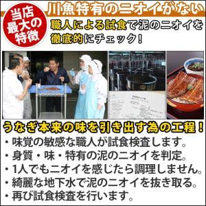 国産 うなぎ 焼き肝 (60g) 肝焼き 珍味の詳細画像4