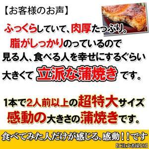 国産 うなぎ 蒲焼き 超特大サイズ 200g×...の詳細画像3