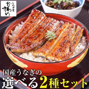 父の日 プレゼント 国産 うなぎ 蒲焼き 2種お試しセット 送料無料 グルメ ウナギ 鰻 プレゼント