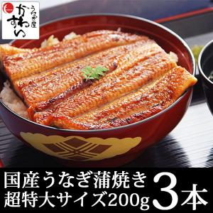 国産 うなぎ 蒲焼き メガサイズ 特大 200g 3本セット(ウナギ 鰻 送料無料)