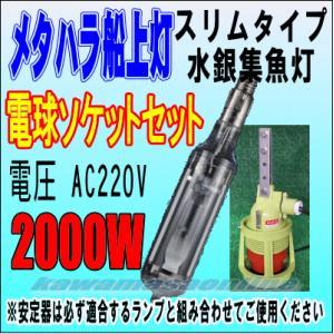 電球とソケットのセットです。 メタハラ電球、ソケット(ラムダG3)、各1個