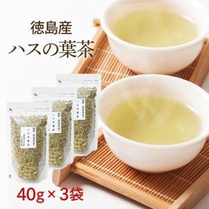 ハスの葉茶 40g×3袋 国産健康茶 徳島県産 ノンカフェイン カフェインレス