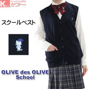 スクールベスト スクール ベスト 小学生 中学生 高校生 制服 Vベスト 前開き 夏 夏用「オリーブのエチケットブラシをプレゼント」JN723|kawatoh