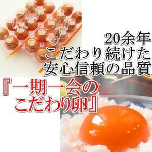 たまご 一期一会のこだわり卵 8パック(80個) 国産 鶏卵 卵 タマゴ 玉子 kawatora