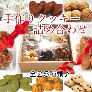 クッキー詰め合わせ Cセット  ギフト 手作り kawatora