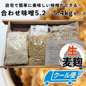 手作り味噌セット 合わせ味噌5kg(約5.5kg 無添加・九州産) 味噌作りセット キット|kawazoesuzou