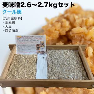 味噌作りセット 麦味噌3kg(約3.2kg 無添加・九州産) 手作り味噌セット|kawazoesuzou