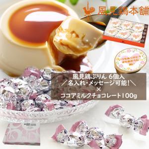 ミルクプリン6個セット×神戸モンロワールココアミルクチョコレート100g 約20個 1箱セット kazamidorihonpo