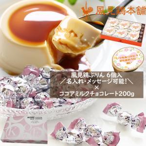 ミルクプリン6個×神戸モンロワールココアミルクチョコレート200g 約40個 セット kazamidorihonpo